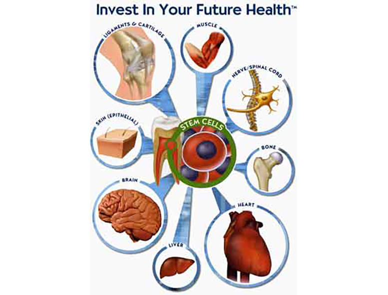 invest in your future health banner
